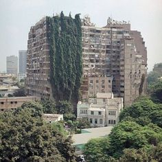 FFFFOUND! | Tumblr #building #architecture