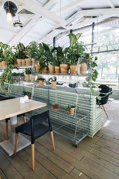 Bulka Cafe