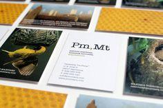 Pm,Mt arquitectura