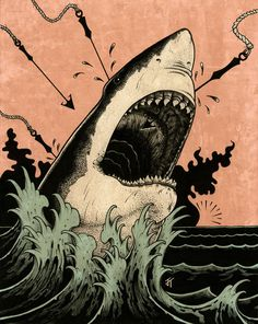 http://jaredtuttle.tumblr.com/ #teeth #ocean #harpoon #white #shark #jaws #illustration #great #waves
