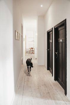 #Dog in the #hallway of a Berliner #apartment. #PoorButSexy by #HagarAbiri. Photo by #DianeAdam.