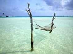 Maldives! A virtualvacation - Wildfox inspiration for artists - Inspiration for artists from Wildfox Couture #ocean #hammock #relax #photography #sea
