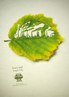 Colossal | An art and design blog. #creative #cut #leaf #environment #nature #poster #pollution #green