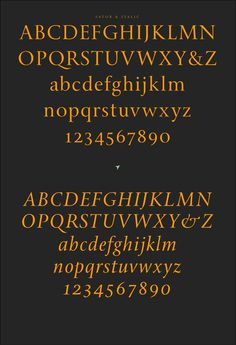 Sator type family by Sumner Stone #jenson #antique #sator