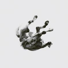 69834_CoverArt_DARKISTHEWAYLIGHTISA_300RGB_original.jpg (JPEG Image, 1280x1280 pixels) - Scaled (68%) #album #white #black #illustration #art