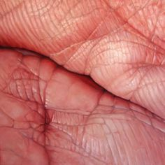 Flesh fields Edie Nadelhaft's paintings #artwork #paintings