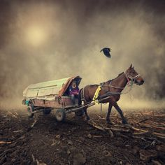 Caras Ionut #photography #manipulations #art