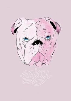 Enjoy on the Behance Network #pitbull #jones #typography #enjoy #illustration #chelsea #dog