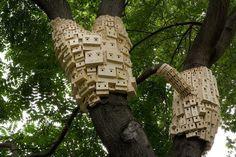 Bunches of Birdhouses Wrapped Around Trees – Fubiz™