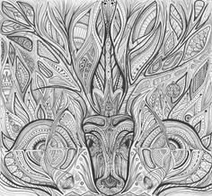Stag drawing by Nadja Christin #illustration #stag #tattoodesign #drawing #syneasthesia