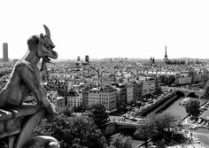 Rooftop of Notre Dame #rooftop #of #dame #notre