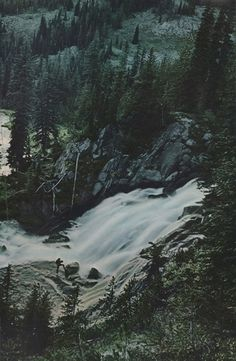 269160515199407711_UjSR9JdB_c.jpg (JPEG Image, 553 × 845 pixels) #forest #waterfall #national geographic