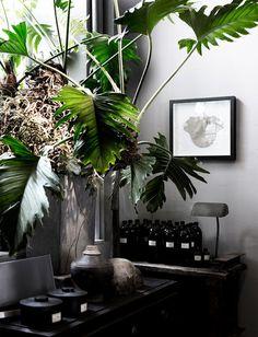 Interior design #interior #design
