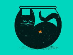 #illustration #cat