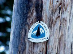 STEEL BISON: Photo #steel #marker #bison #tree #trail #up #lock