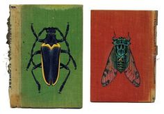 Colossal | An art and design blog. | Page 8 #book cover #bugs #rose sanderson