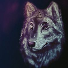 Lykorum #4eyes #wolf #lykorum