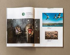 Asian Geographic Magazine Design | MagSpreads | Magazine Layout Inspiration and Editorial Design #xx