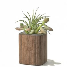 Grovemade Desktop Collection #accessories #desktop #office #planter #home #wood #desk