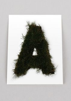 Autobahn_Evergreen_Typeface_01 #letter #grass #typography