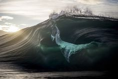 Ray Collins, Ocean, water