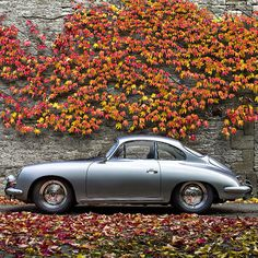 Fancy Porsche 356 #vines #vehicles #automobiles #green