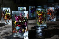 "Azuma Makoto Sets Plants in Inorganic Space in ""Iced Flowers"""
