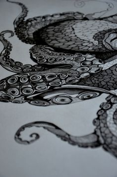 Design Diner #white #black #octapus #drawing #sketch
