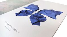 Fedrigoni Metallic Papers   Thomas Manss & Company #design #graphic #book #butterfly #samples #illustration #layout #paper #metallic #foil #typography
