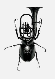 paris texas beetle merged with tuba