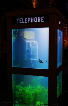 Aquarium creative phone booth