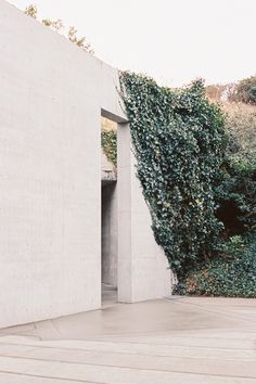 Morgan Hickinbotham - S E I S M E S #photo #door #photography #wall #kudzu
