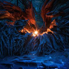 Cathedral Grove, Colvilletown