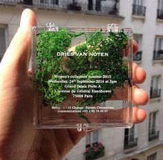 "harinef: messgala: Invites at Dries Van Noten S/S 15 recreated the runway in advance okay i was thinking like ""she's stoned"" lookin #invitation #concept #package #typography"