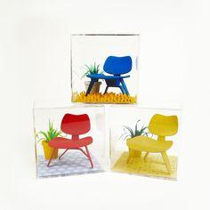 Mini Mid-Century Chair Terrarium #eames #eames chair #paper sculptures #paper #art #gifts #cube #office desk #desk #eames design #mid centur