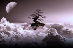 """One Life"" #cloud #clouds #digitalart #fantasy #landscape #landscapes #manipulation #moon #photomanipulation #sky #surreal #tree #art"
