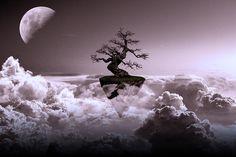 """One Life"" #cloud #clouds #digitalart #fantasy #landscape #landscapes #manipulation #moon #photomanipulation #sky #surreal #tree #art"