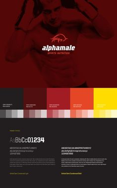 ALPHAMALE on Branding Served #color #identity #guide