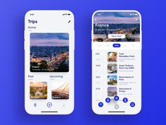 Travel Planner App by tubik