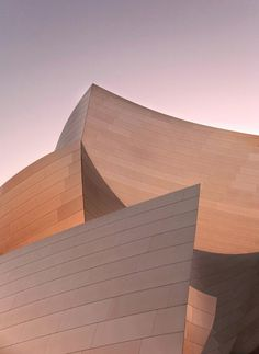 Walt Disney Concert Hall_LA_TH_0611.jpg #photography #architecture