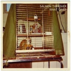 What Gives | Salmon Thrasher #gives #salmon #thrasher