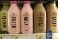 found type futura shattoo milk company bottle #typography #type #branding #milk #futura