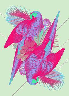 Print by Ricardo Garcia #neon #birds #parrots