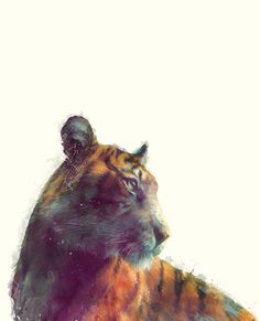 Tiger // Solace Art Print #illustration #society #6