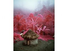 Richard Mosse | Photography #mosse #photography #richard