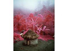 Richard Mosse | Photography