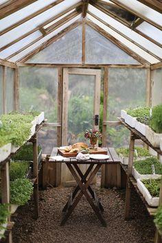 breadandolives:|Source| #greenhouse