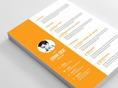 Free Editable Vector CV Template with Cover Letter