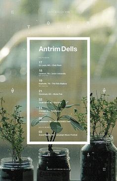 Antrim Dells #music #helvetica #tour #poster