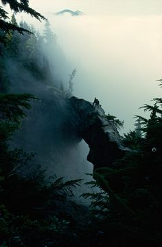 Hikers stand near the top of a natural rock bridge on Mt. Rainier, Washington, May 1963.Photograph by Barry Bishop, National Geographic #fog #1963 #rock #hikers #nat #nature #vintage #mt #film #bridge #geo #rainier